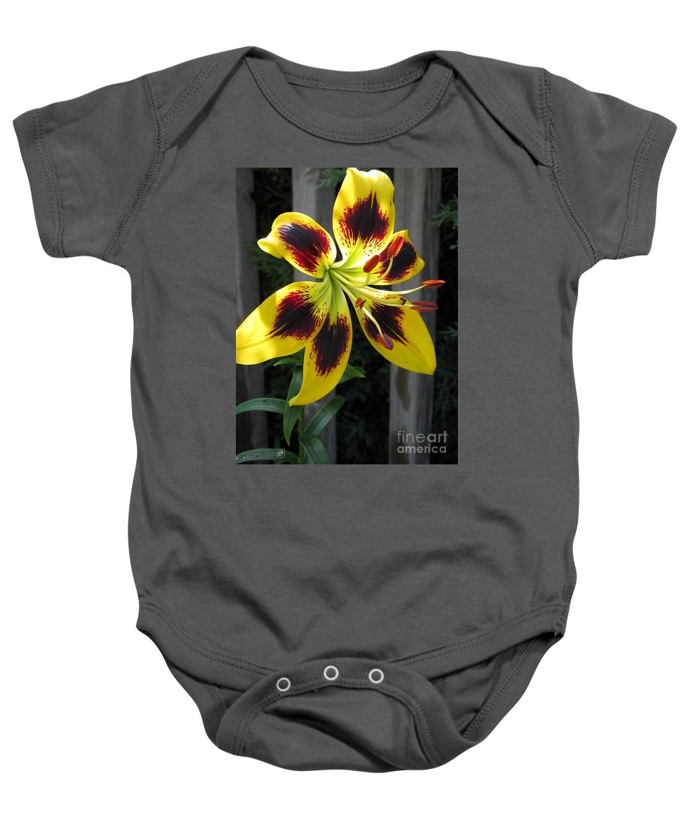 Asiatic Lily Baby Onesie featuring the photograph Asiatic Lily Named Black-eyed Cindy by J McCombie