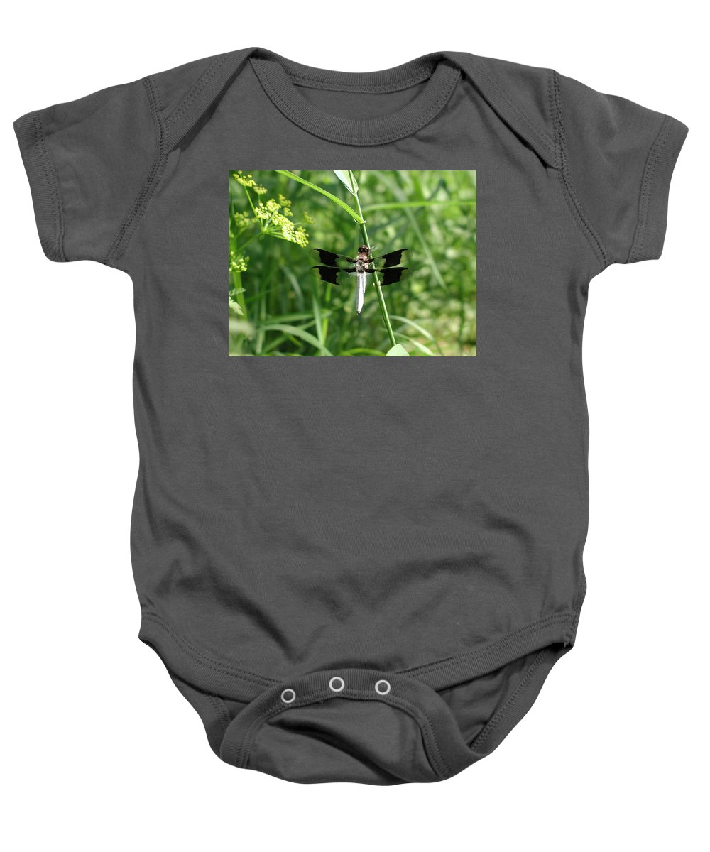 Dragonfly Baby Onesie featuring the photograph Dragonfly by Anna Ruzsan