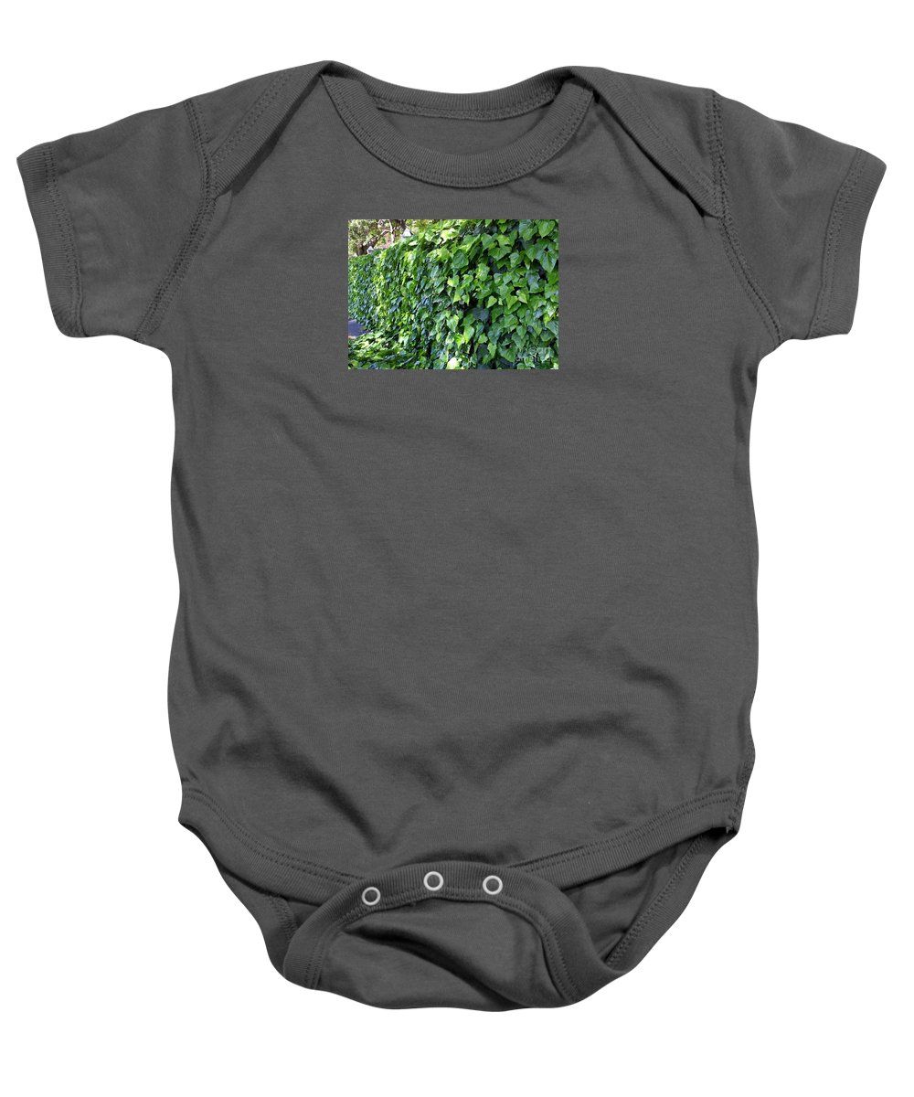 Ivy Baby Onesie featuring the photograph Ivy Wall by Carol Groenen