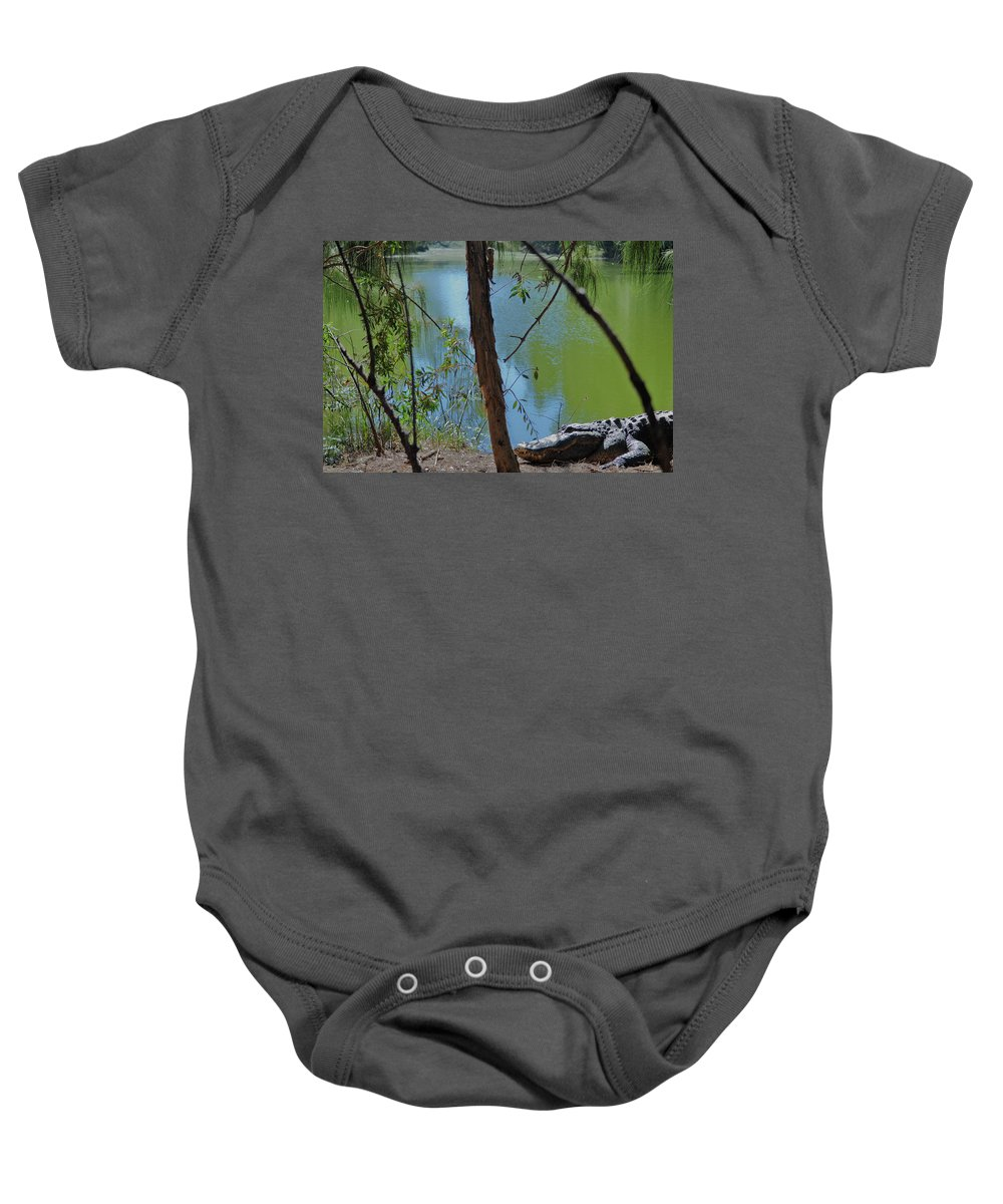 Grassy Waters Preserve Baby Onesie featuring the photograph 21- King Of The Swamp by Joseph Keane