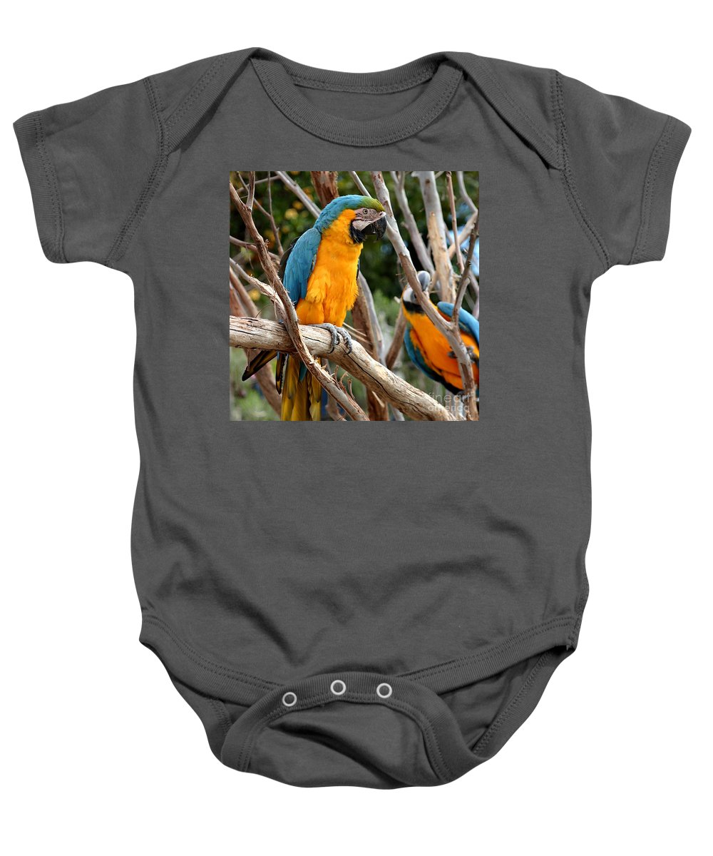 Blue Baby Onesie featuring the photograph Blue And Gold Macaw by Henrik Lehnerer