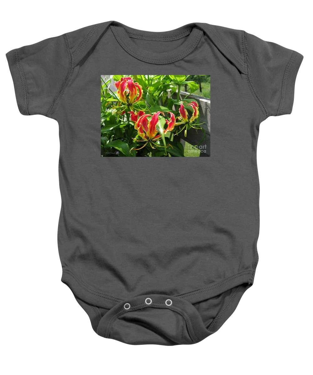 Gloriosa Baby Onesie featuring the photograph Gloriosa Named Rothschildiana by J McCombie