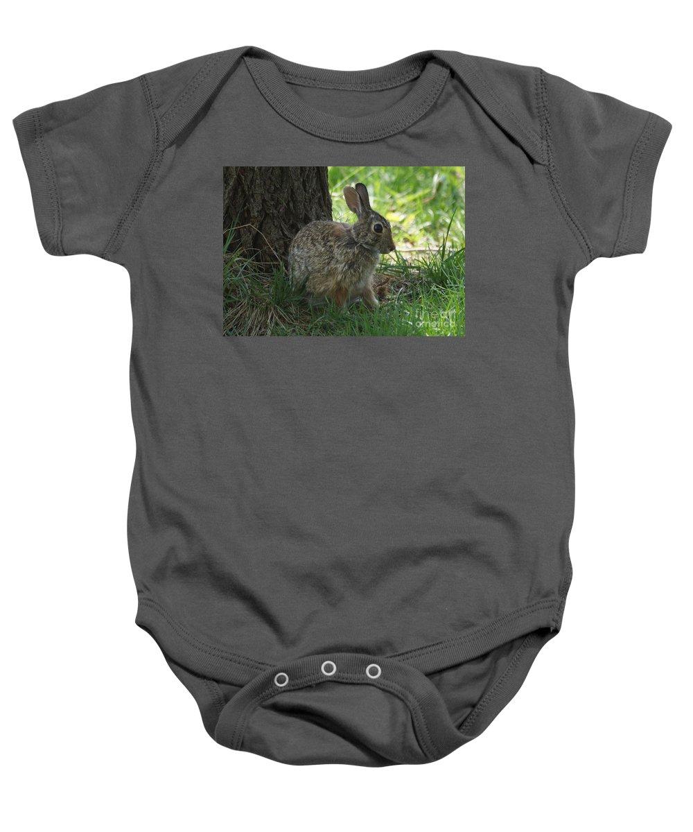 Rabbit Baby Onesie featuring the photograph Rabbit by Lori Tordsen