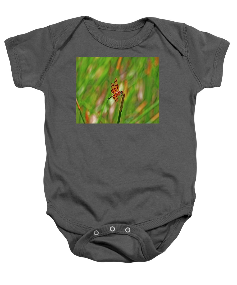 Baby Onesie featuring the photograph 8- Dragonfly by Joseph Keane