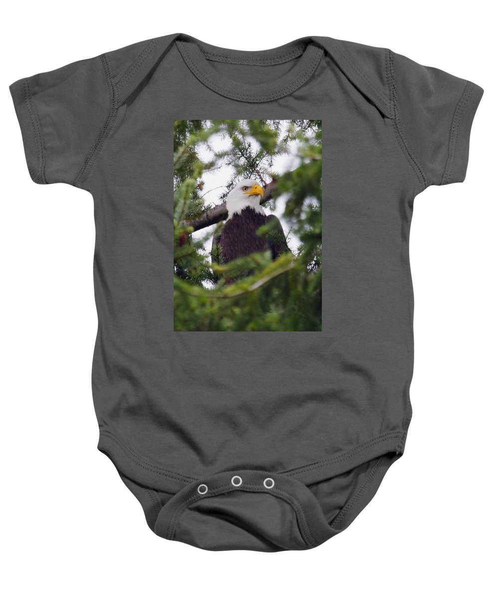 Animal Baby Onesie featuring the photograph A Bald Eagle by Raven Regan