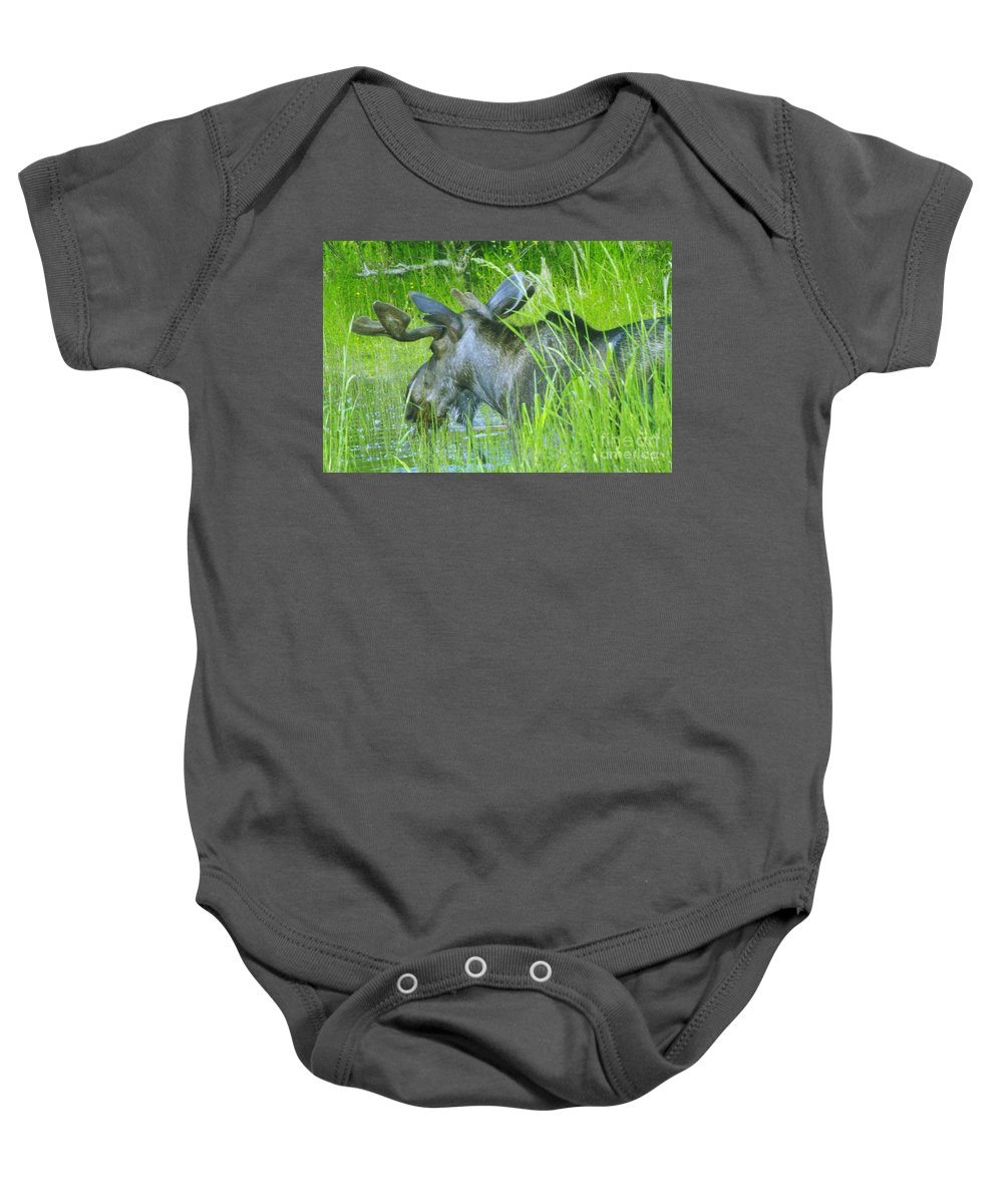Wildlife Baby Onesie featuring the photograph A Bull Moose Wading His Pond by Jeff Swan