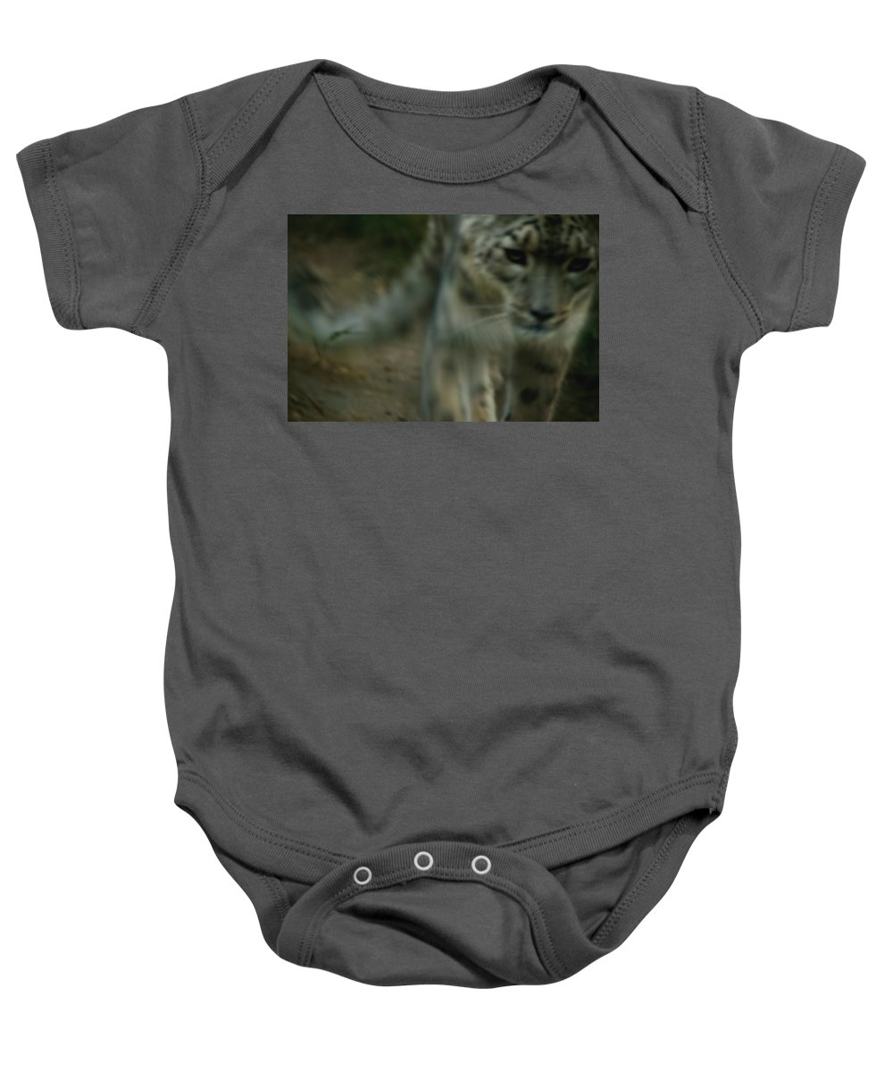 Sneak Baby Onesie featuring the photograph A Snow Leopard by Darren Greenwood