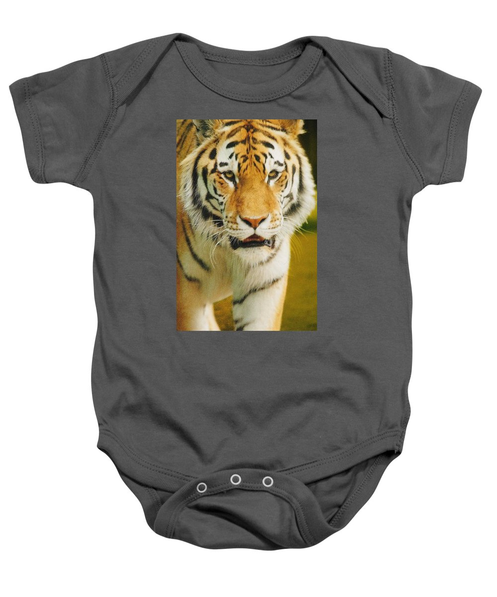 Outdoors Baby Onesie featuring the photograph A Tiger by Don Hammond
