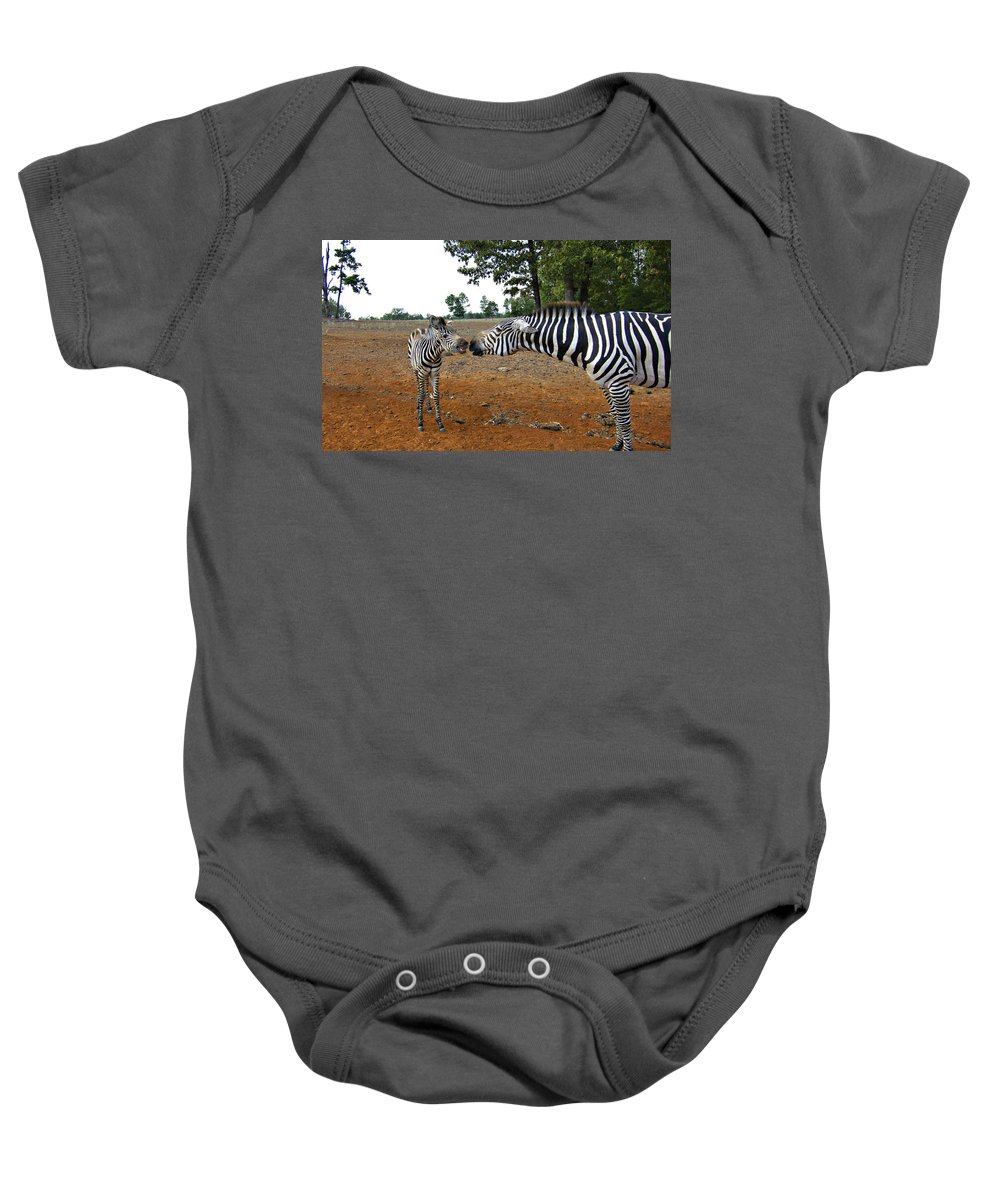 Zebras Baby Onesie featuring the photograph Affectionate Mother by Douglas Barnard