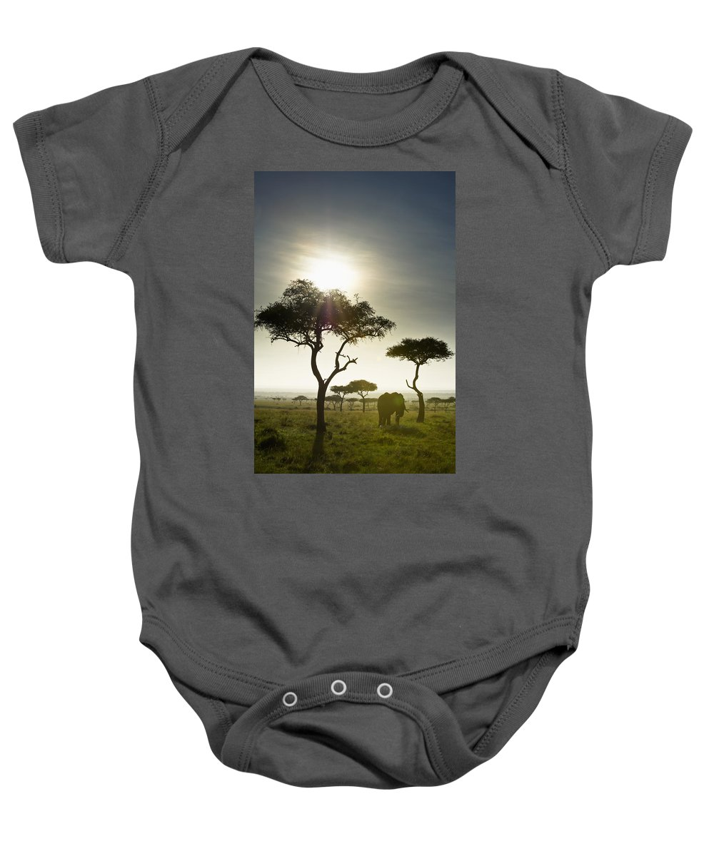 African Baby Onesie featuring the photograph An Elephant Walks Among The Trees Kenya by David DuChemin