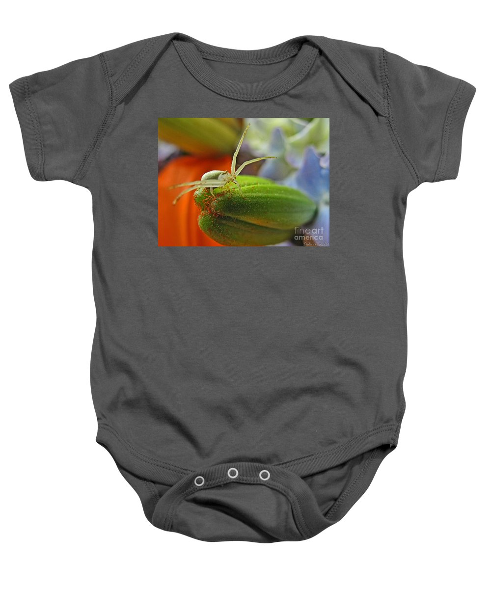 Nature Baby Onesie featuring the photograph Back Off by Debbie Portwood