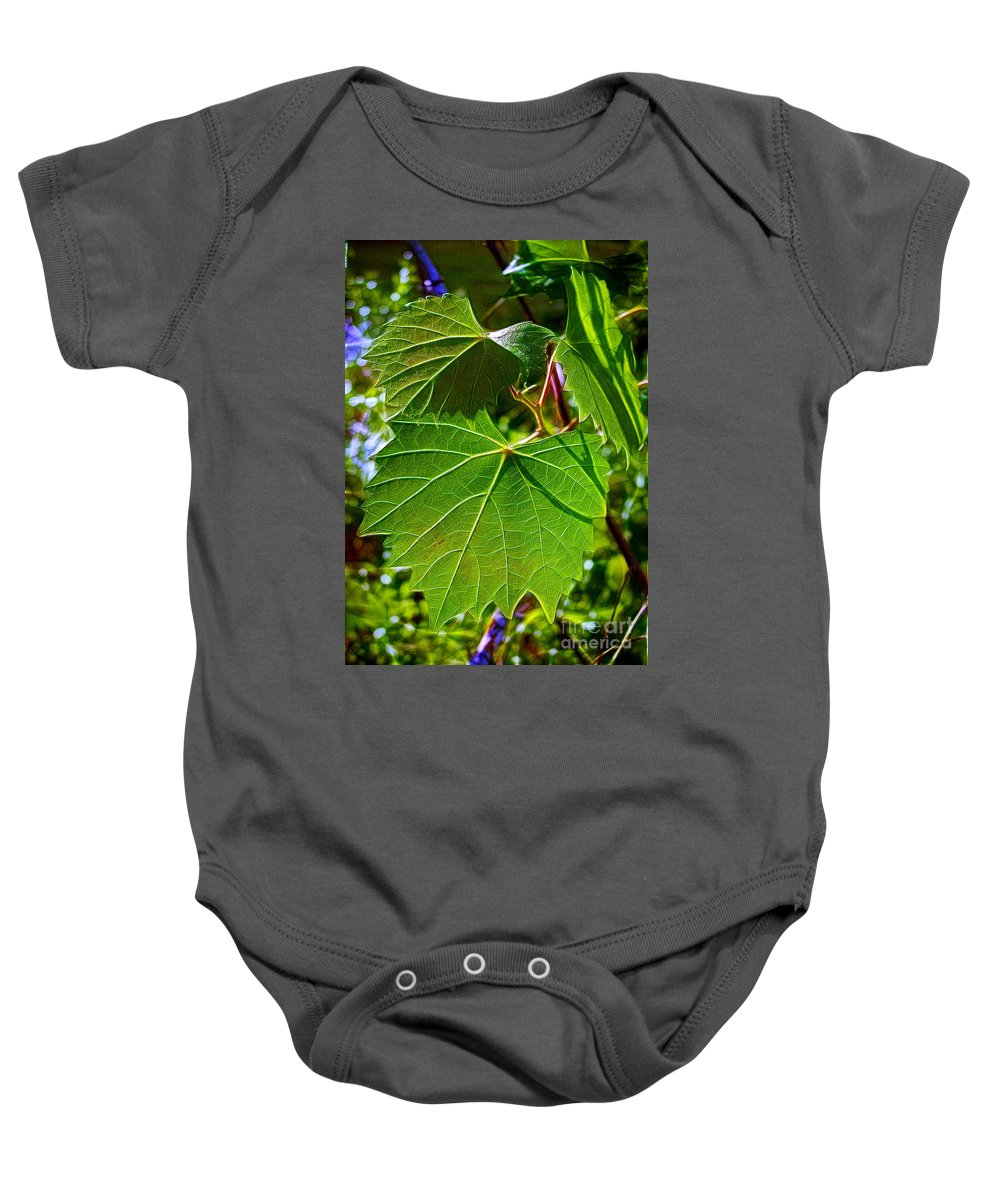 Leaves Baby Onesie featuring the photograph Backlit Leaves by Judi Bagwell