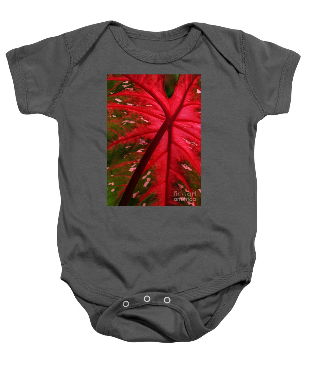 Leaf Baby Onesie featuring the photograph Backlit Red Leaf by Sabrina L Ryan