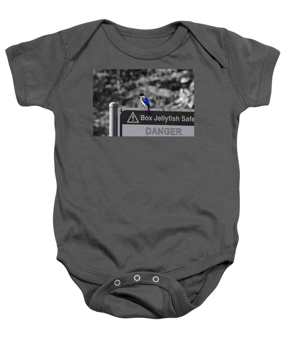 Kingfisher Baby Onesie featuring the photograph Be Warned by Douglas Barnard
