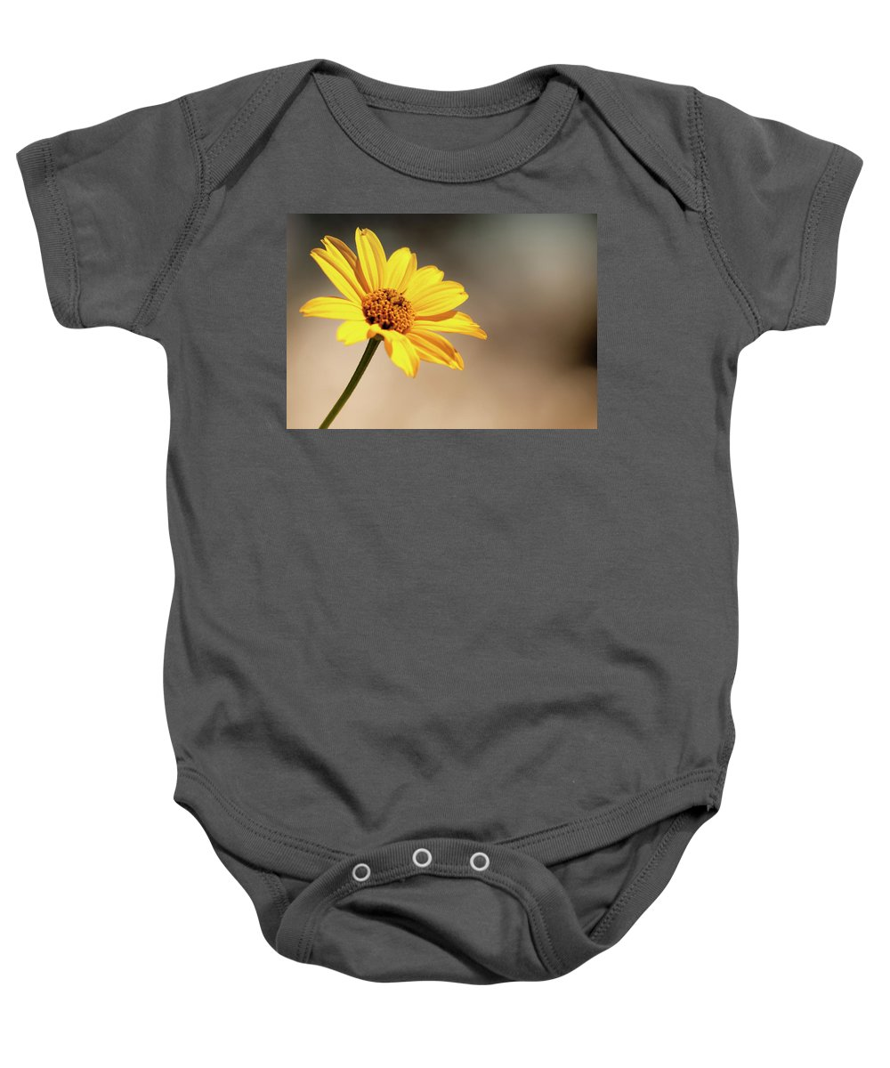 Flower Petals Baby Onesie featuring the photograph Beauty In Simplicity by Sarah Wiggins