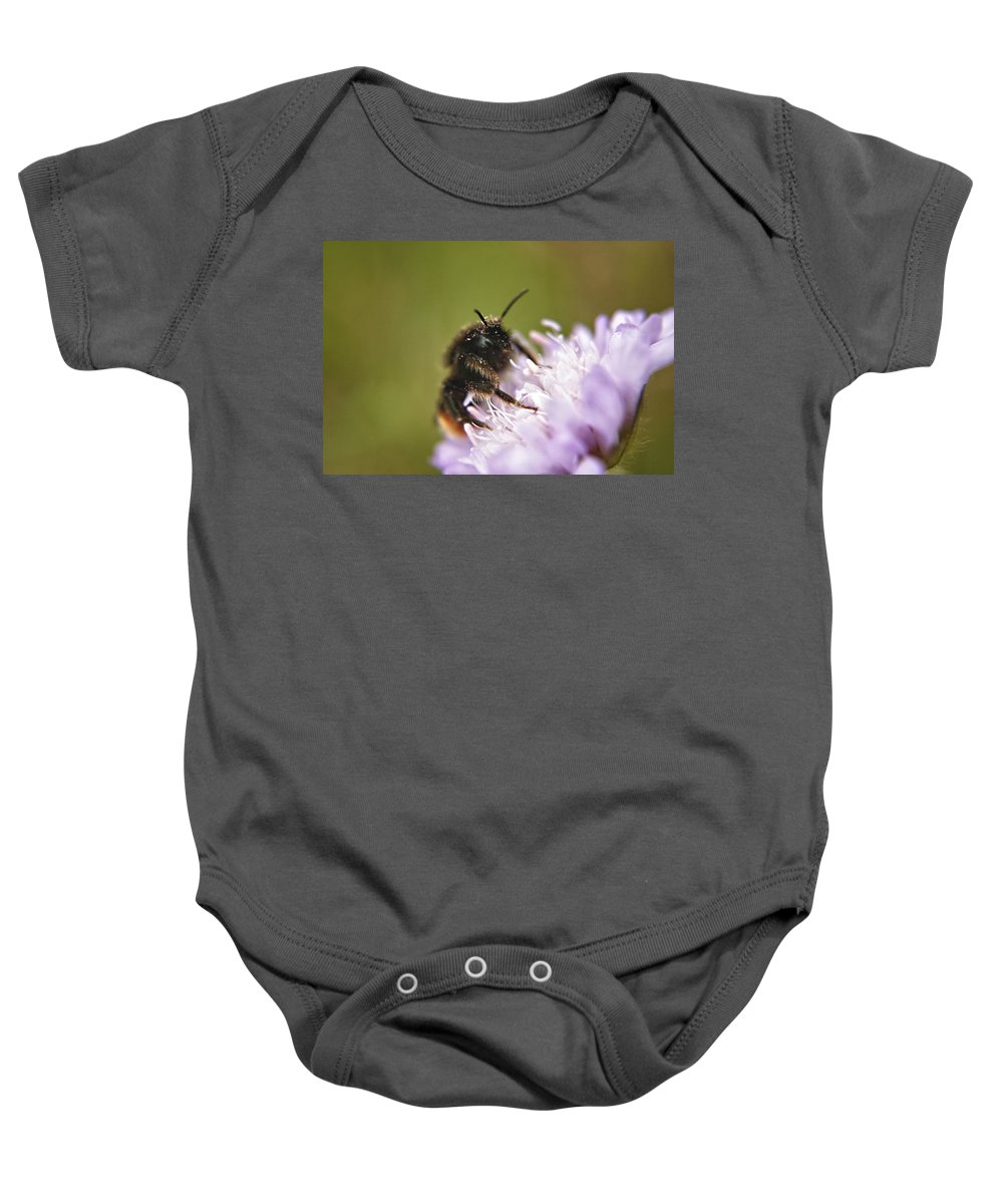 Bee Baby Onesie featuring the photograph Bee In Pollen by Vicki Field