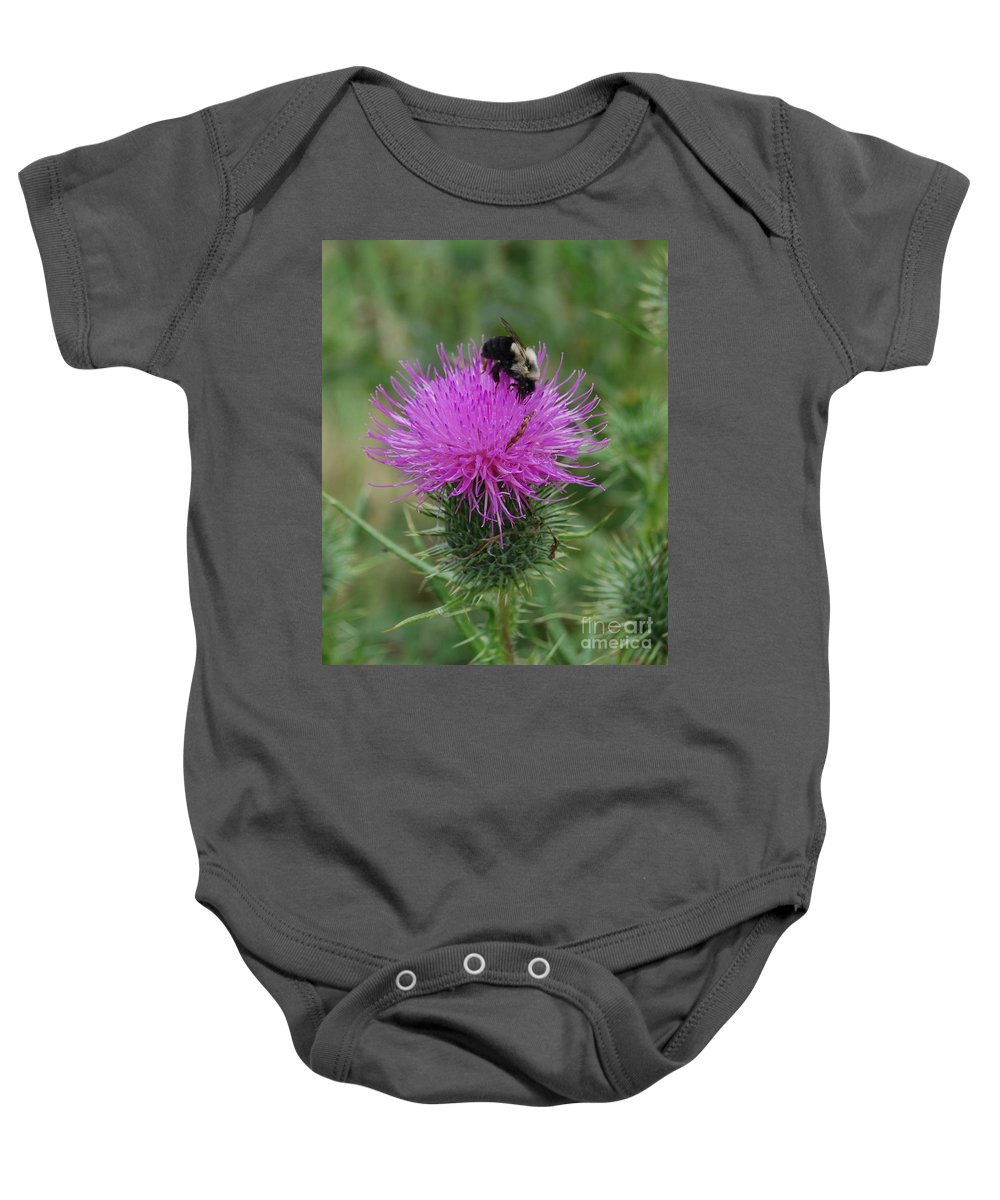 Thistle Baby Onesie featuring the photograph Bee On Thistle by Grace Grogan