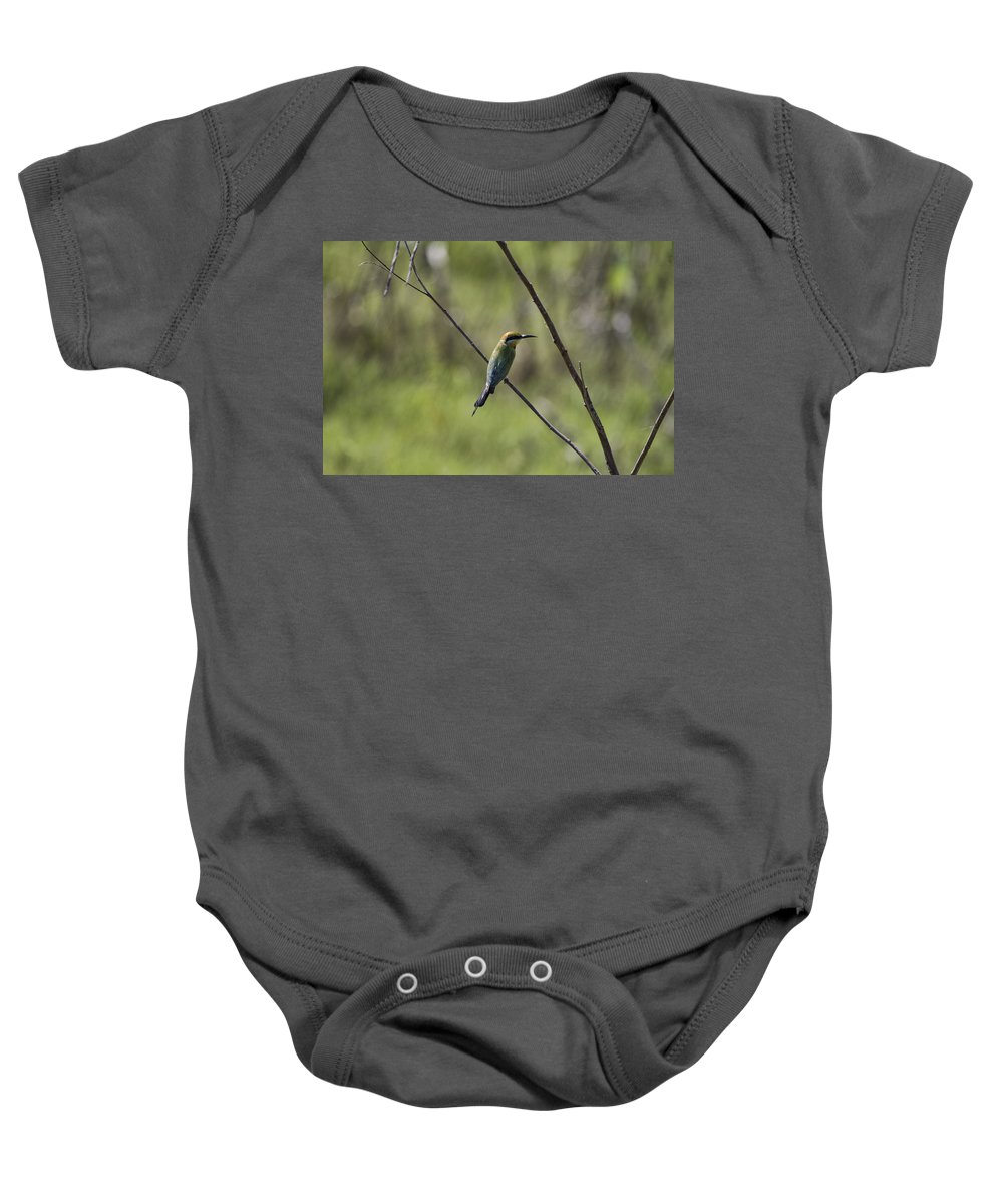 Bee-eater Baby Onesie featuring the photograph Bird Of Color by Douglas Barnard