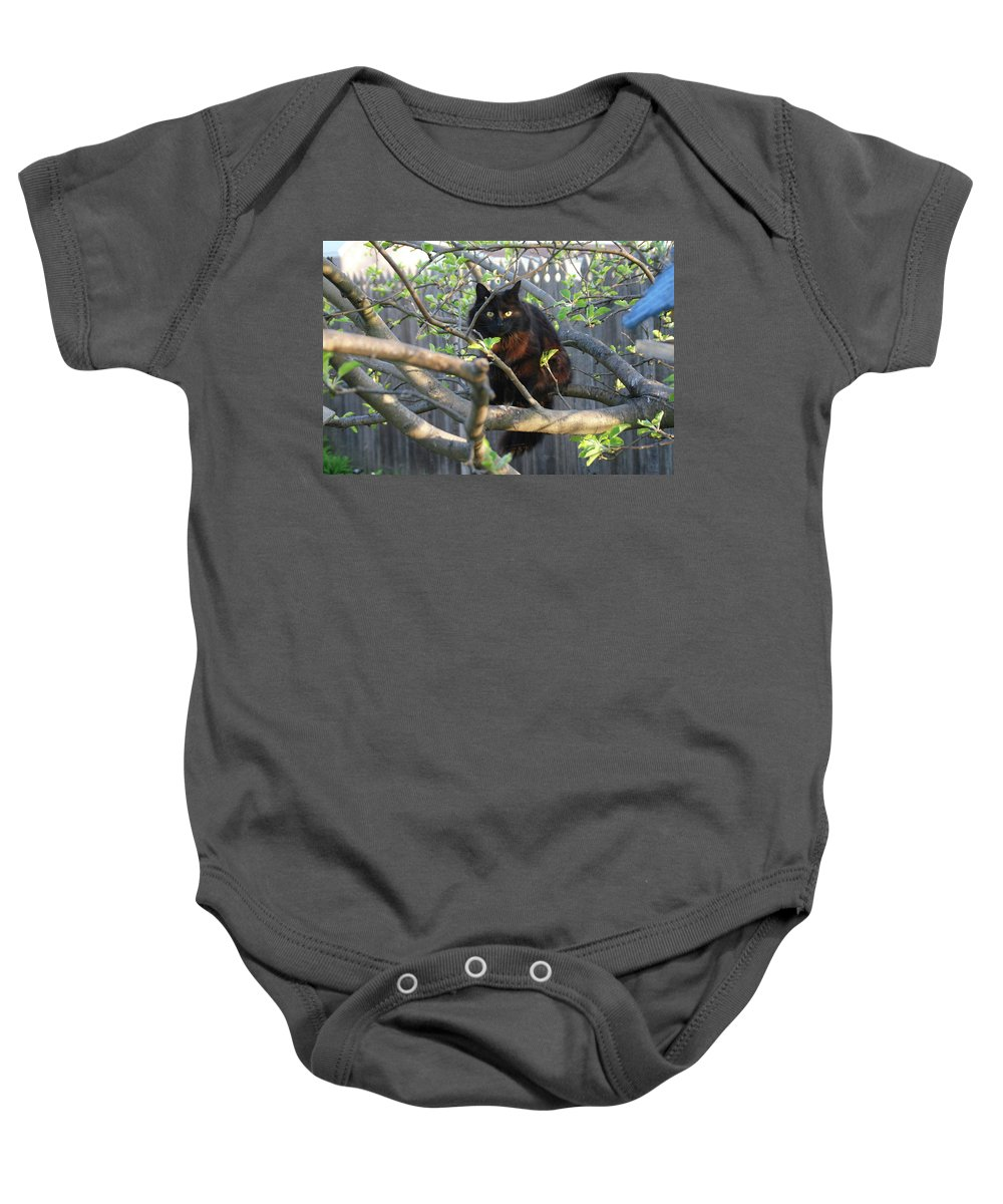Cat Baby Onesie featuring the photograph Birding 0052 by Guy Whiteley