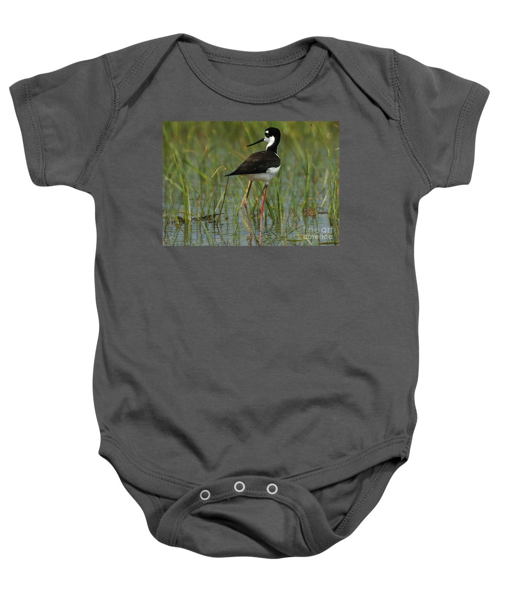 Bird Baby Onesie featuring the photograph Black And White Stilt by Bob Christopher