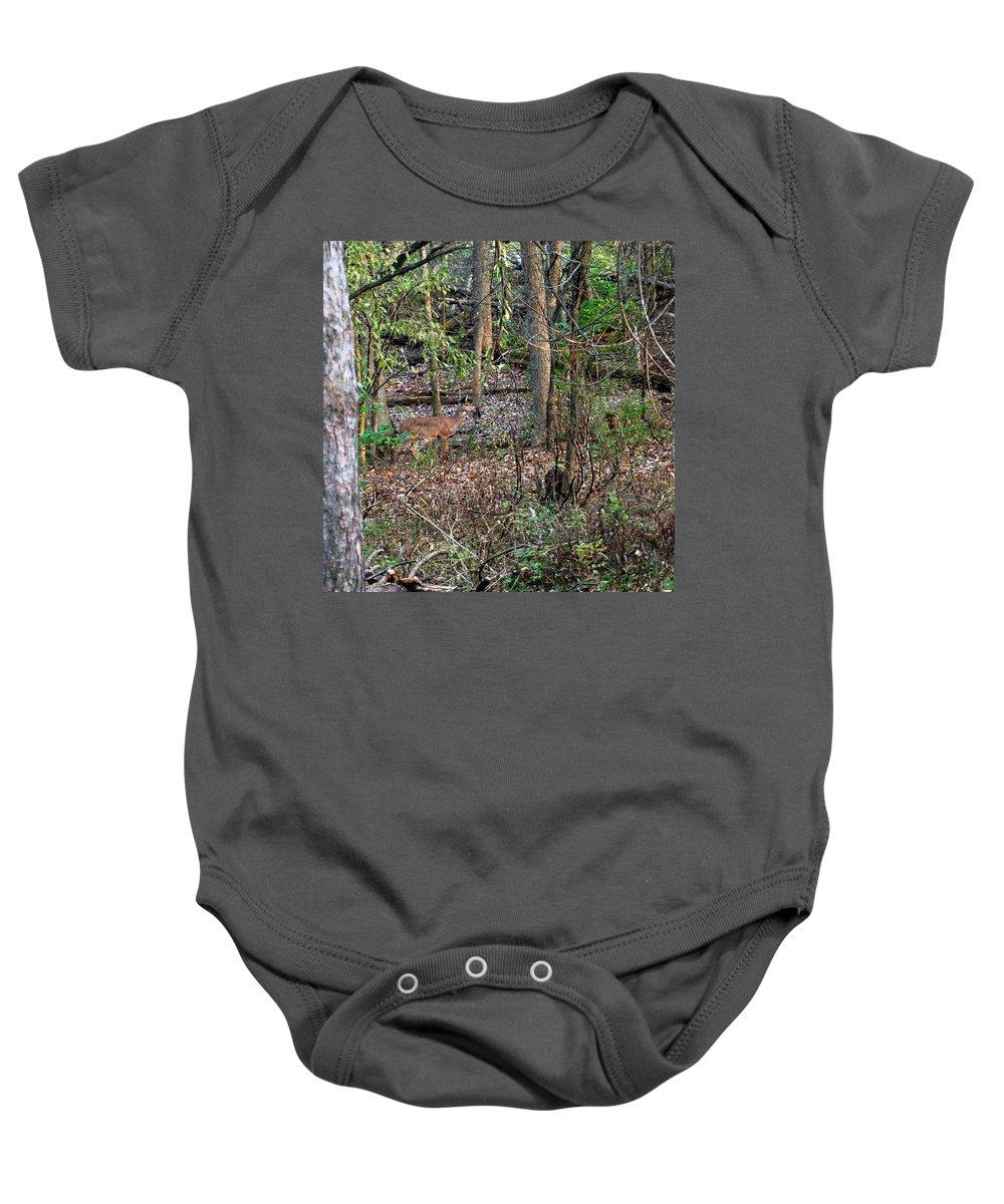 Usa Baby Onesie featuring the photograph Blending Deer by LeeAnn McLaneGoetz McLaneGoetzStudioLLCcom