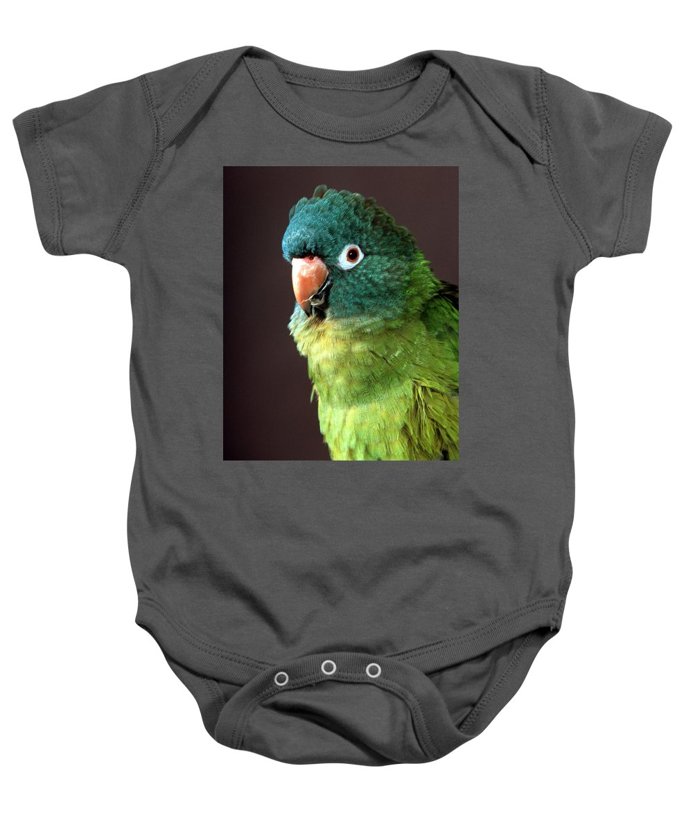 Blue Crowned Conure Baby Onesie featuring the photograph Blue Crowned Conure by Larry Allan