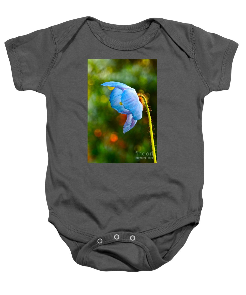 Himalayan Baby Onesie featuring the photograph Blue Poppy Dreams by Byron Varvarigos
