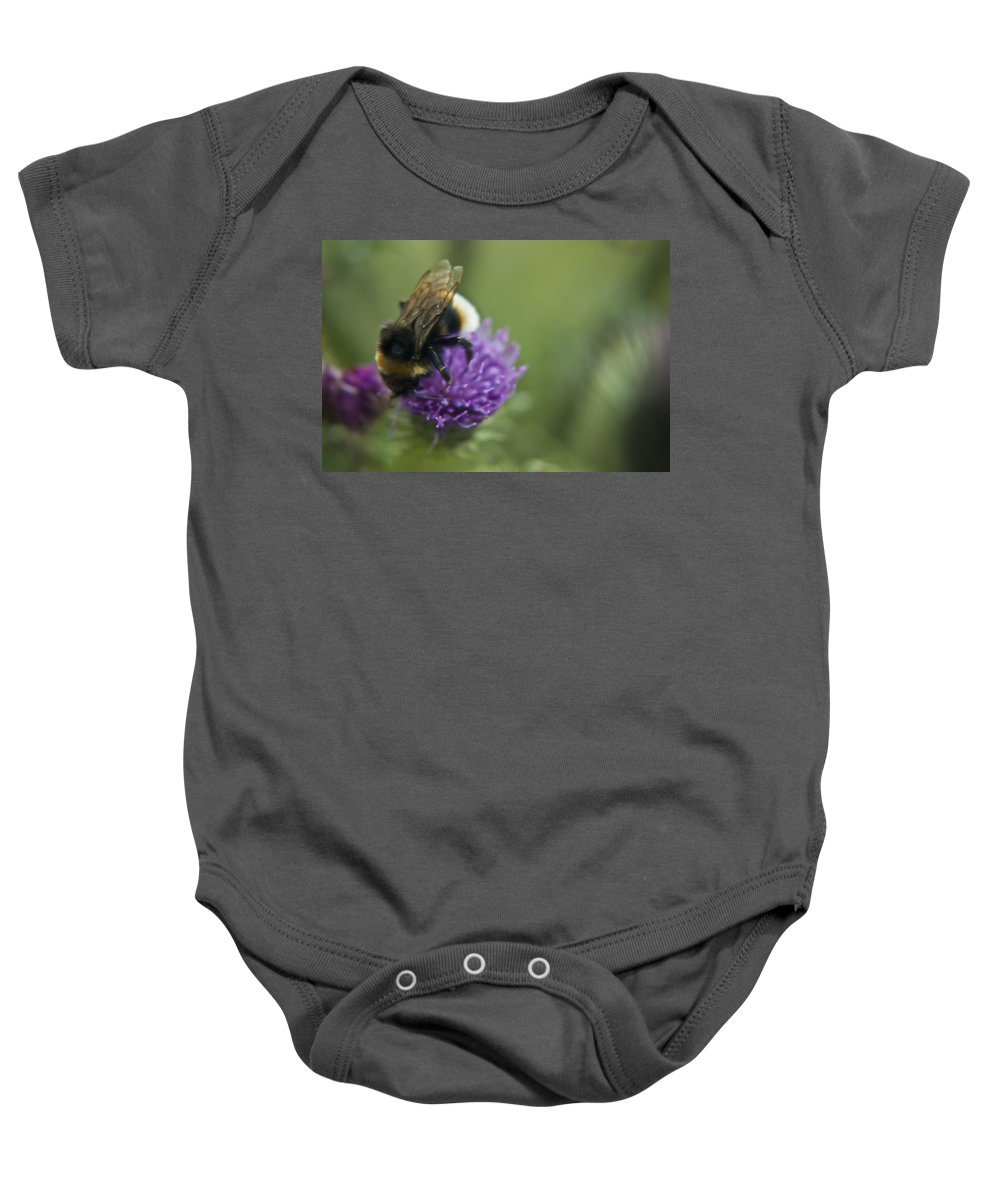 Bee Baby Onesie featuring the photograph Bumble Bee II by Vicki Field