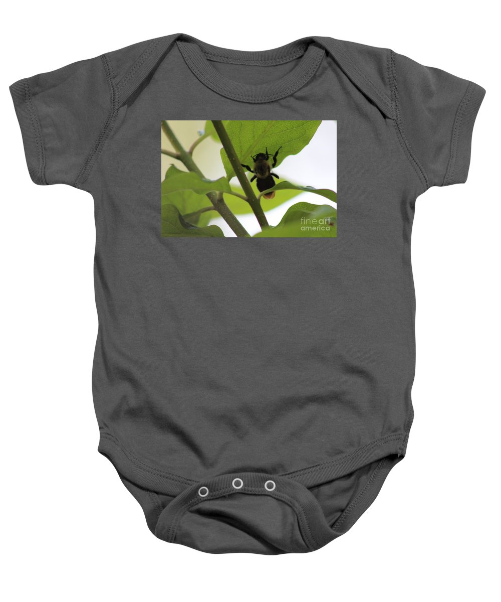 Bee Baby Onesie featuring the photograph Bumble Bee by Stephanie Kripa