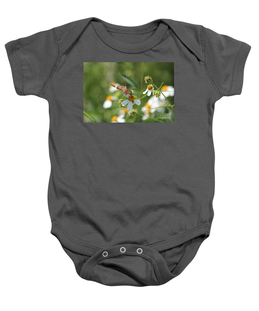 Butterfly Baby Onesie featuring the photograph Butterfly 16 by Michelle Powell