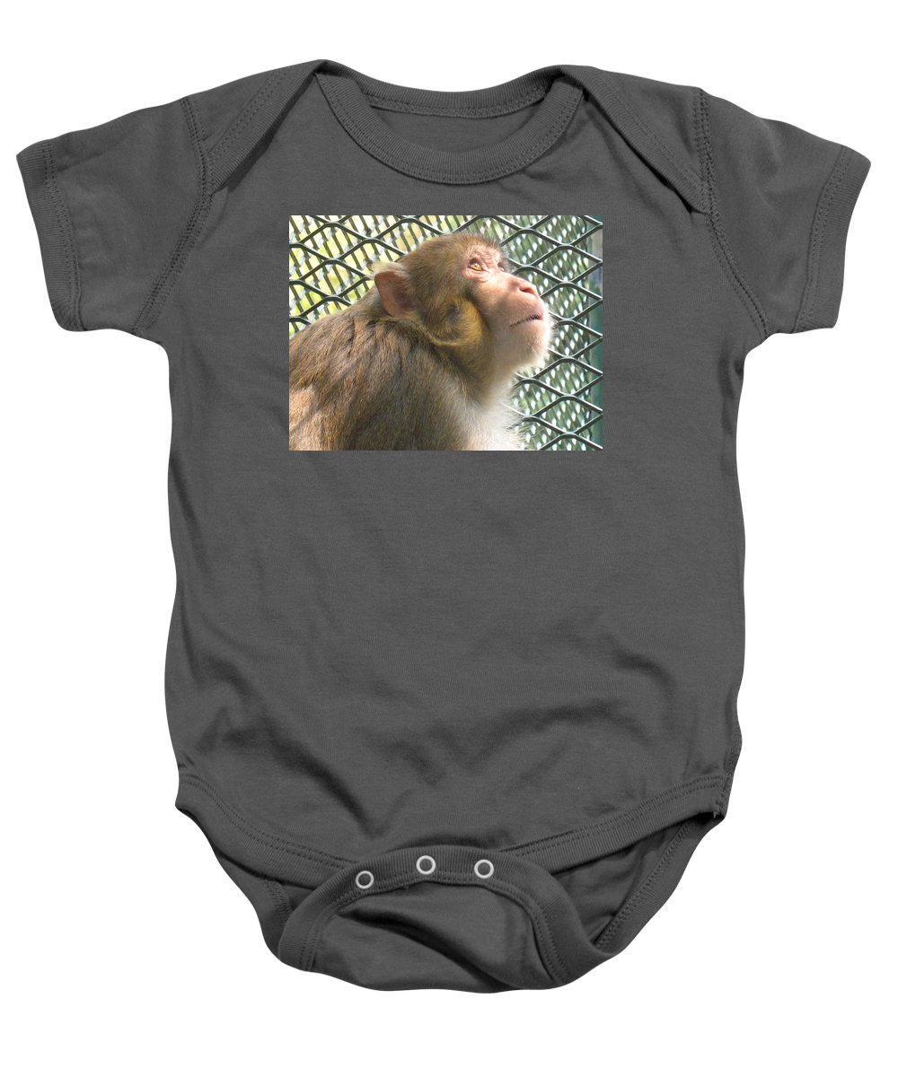 Monkey Baby Onesie featuring the photograph Caged Prayer by Ian Mcadie