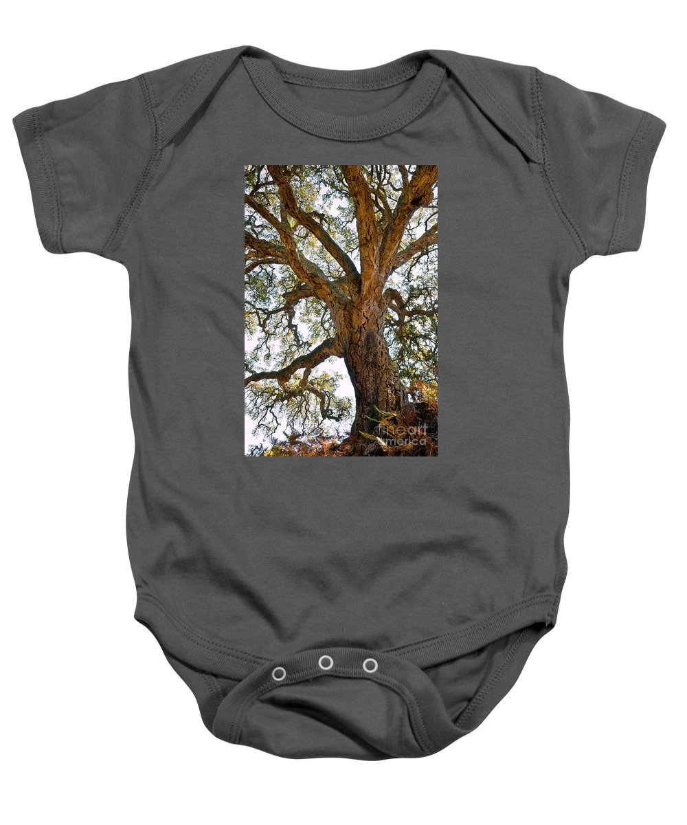 Aged Baby Onesie featuring the photograph Centenarian Cork Tree by Carlos Caetano