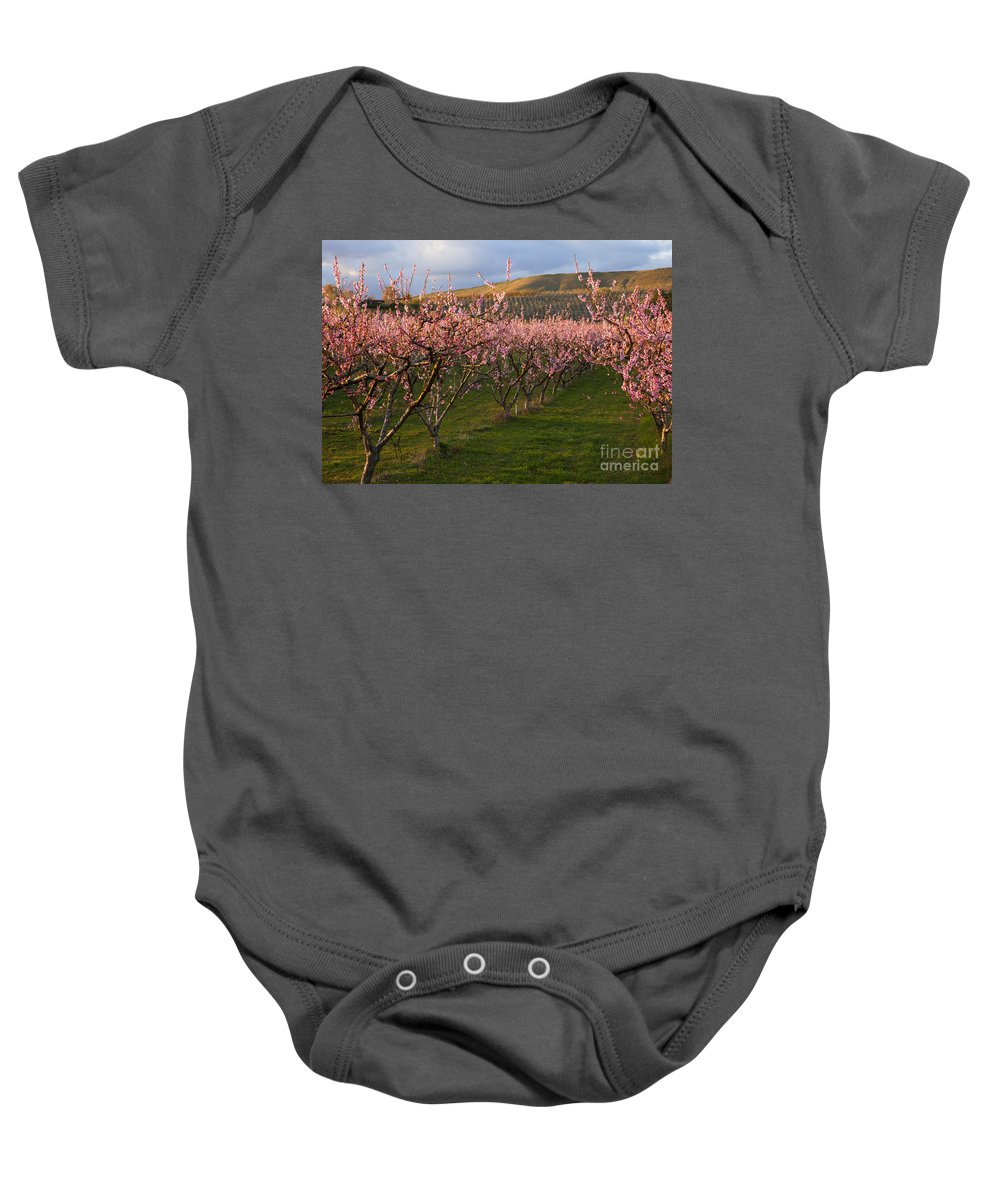 Cherry Baby Onesie featuring the photograph Cherry Blossom Pink by Mike Dawson