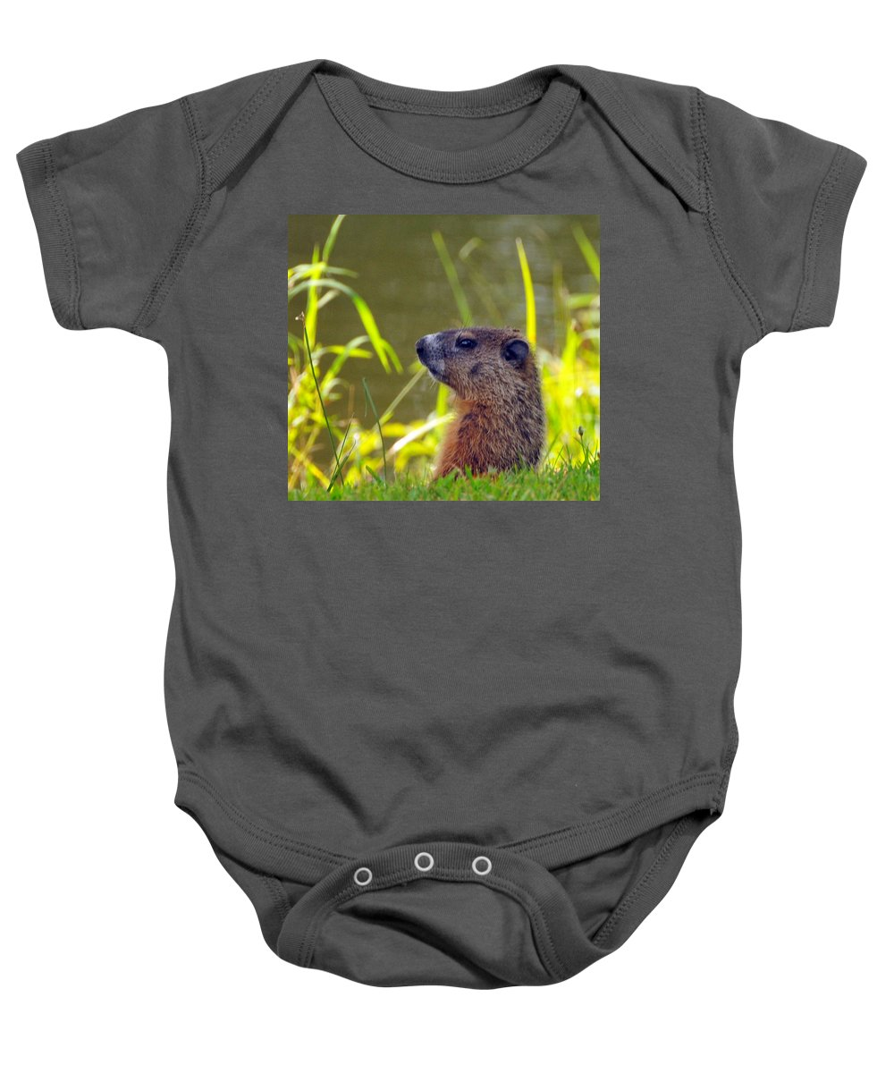Woodchuck Baby Onesie featuring the photograph Chucky Woodchuck by Paul Ward