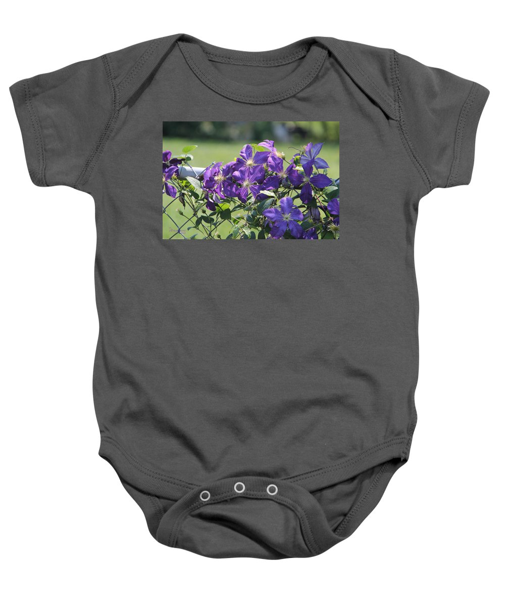 Tn Baby Onesie featuring the photograph Clematis by Ericamaxine Price