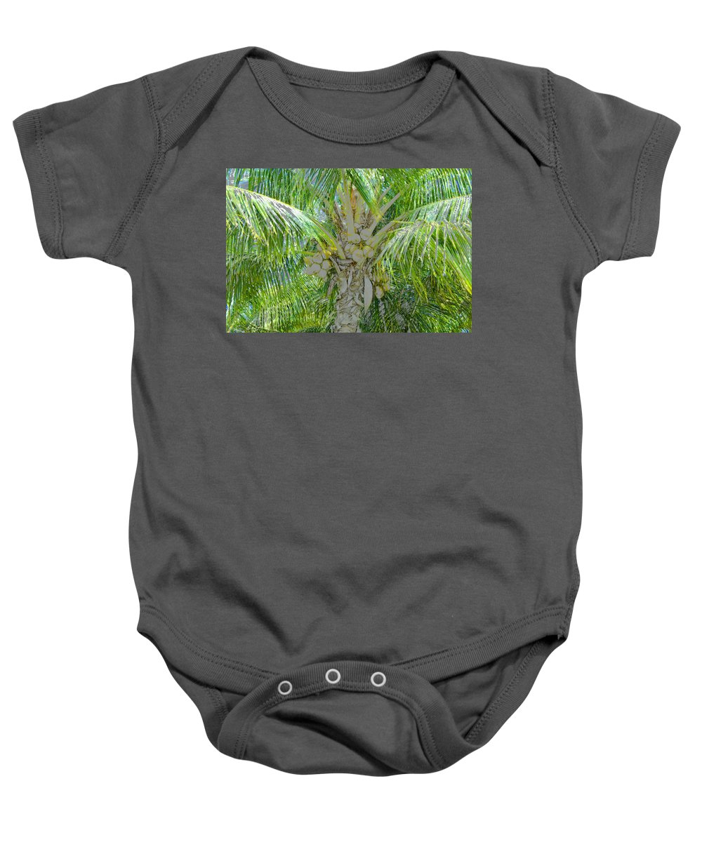 Coconut Palm Baby Onesie featuring the painting Coconut Palm by David Lee Thompson