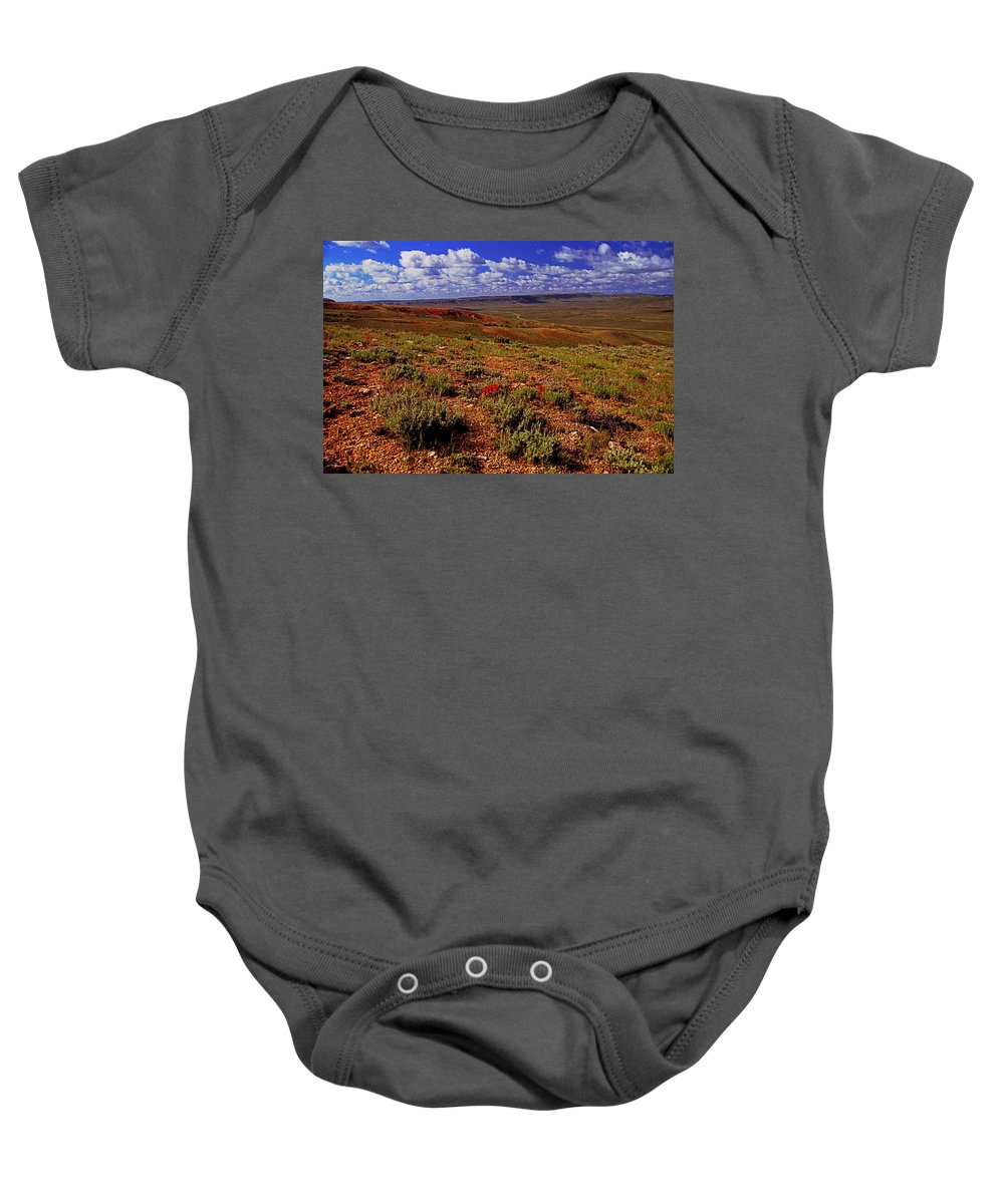 Wyoming Baby Onesie featuring the photograph Colorful Valley From Fossil Lake Trailsil Bu by Rich Walter