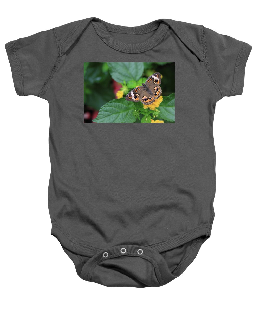 Flowers Baby Onesie featuring the photograph Common Buckeye II by Rick Berk
