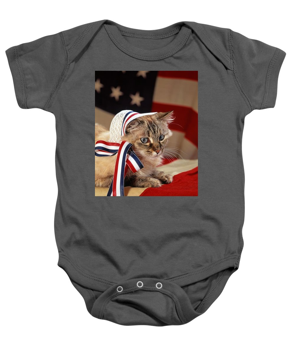 Mixed Breed Cat Baby Onesie featuring the photograph Contemplative Patriot by Larry Allan