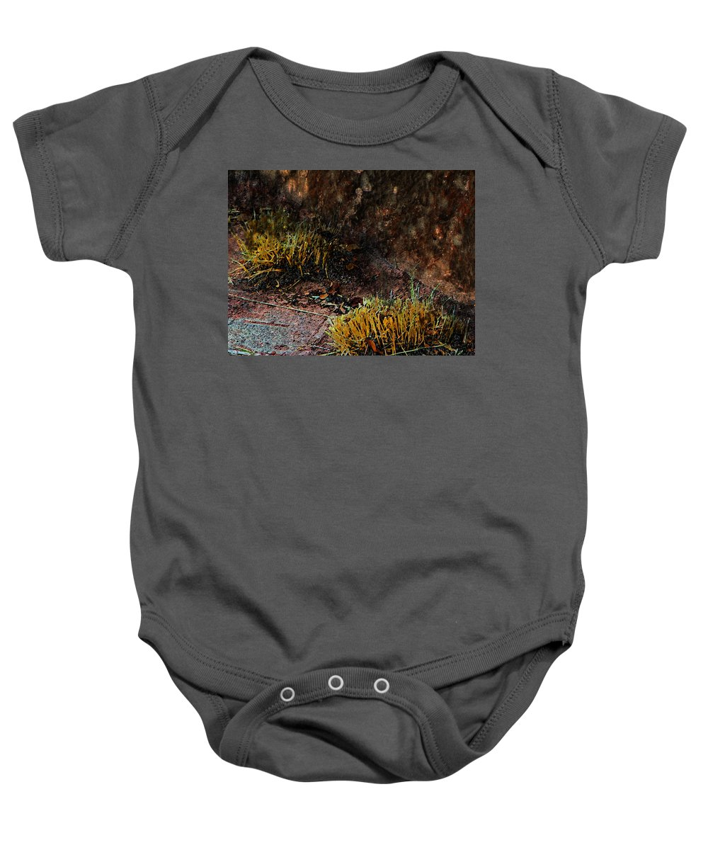 Abstract Baby Onesie featuring the photograph Copper And Gold by Lenore Senior