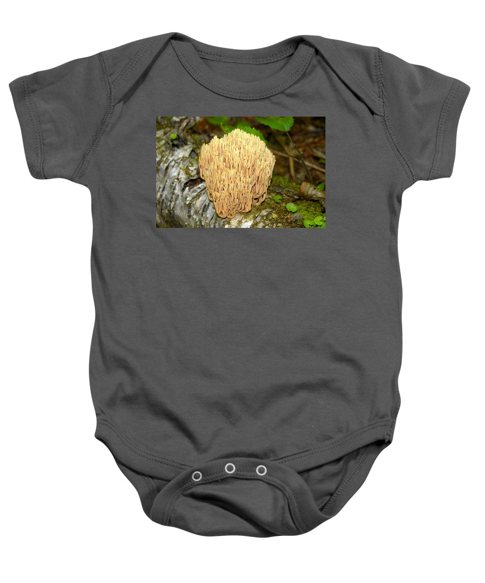 Coral Mushroom Baby Onesie featuring the photograph Coral Mushroom by David Lee Thompson
