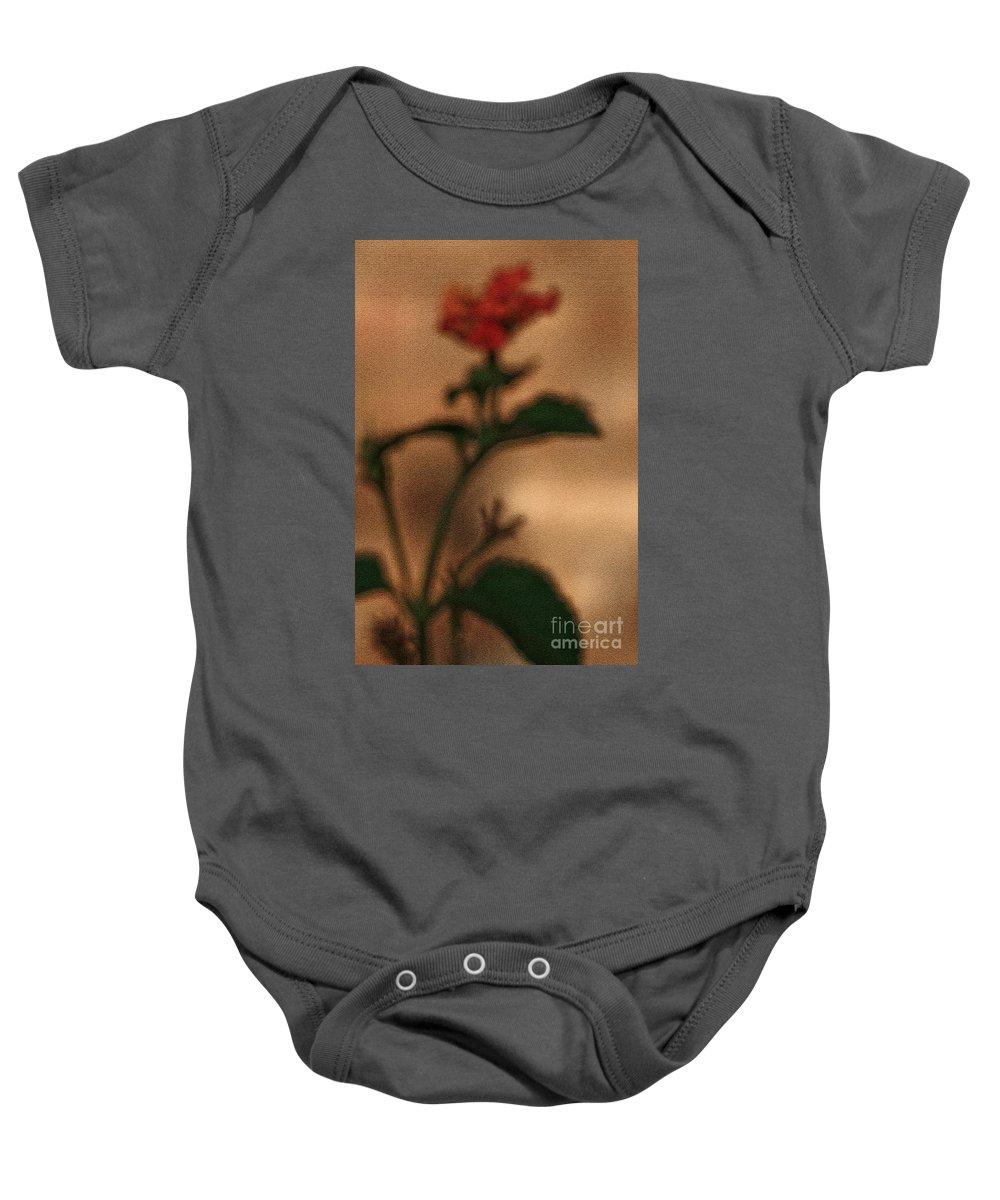 Lantana Bush Baby Onesie featuring the photograph Cracked Flower by Kim Henderson