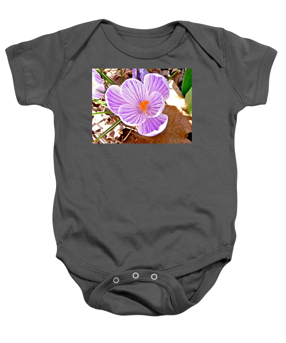 Crocus Baby Onesie featuring the photograph Crocus by Catherine Conroy