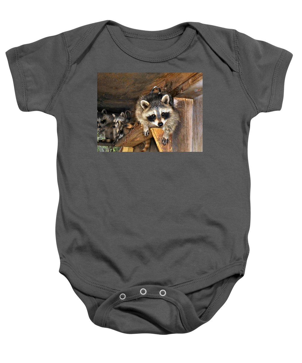 Antler Baby Onesie featuring the photograph Curiosity by Art Dingo