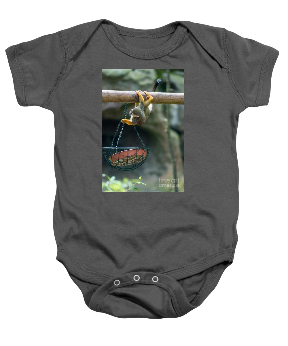 Cute Baby Onesie featuring the photograph Cute Little Monkey by Andrew Michael