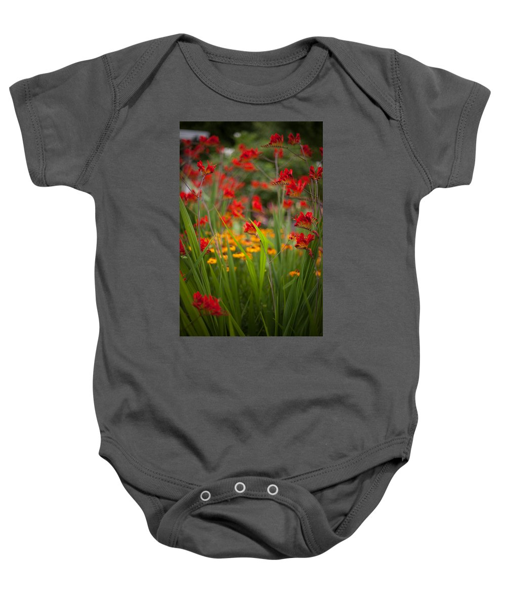 Flower Baby Onesie featuring the photograph Dance Of The Flowers by Mike Reid