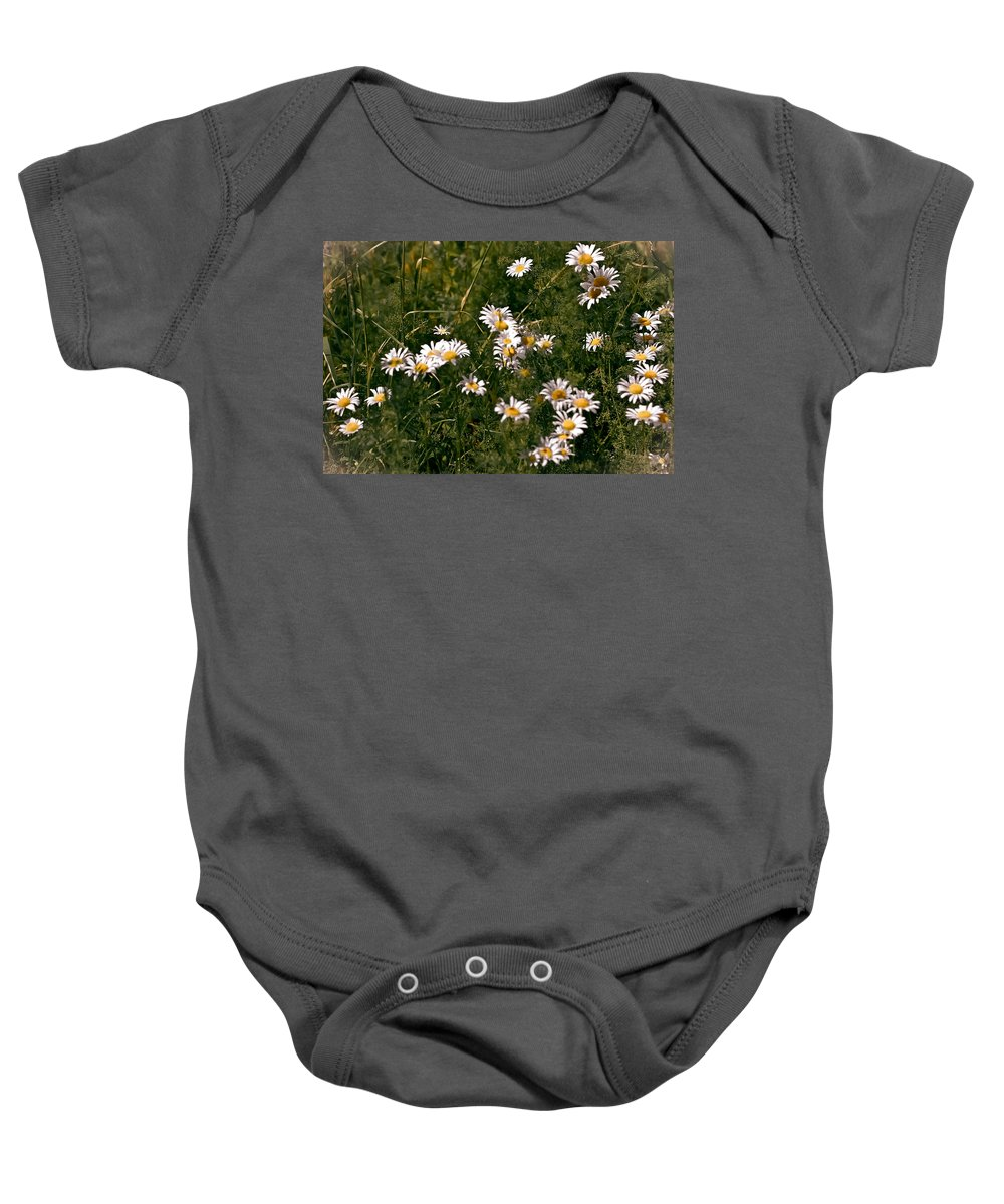 Daisies Baby Onesie featuring the photograph Dancing In The Field by DigiArt Diaries by Vicky B Fuller