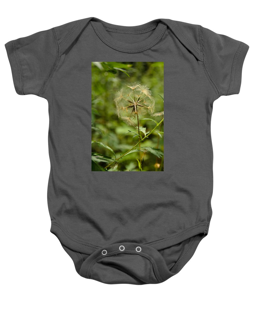 Blowball Baby Onesie featuring the photograph Dandelion by Michael Goyberg