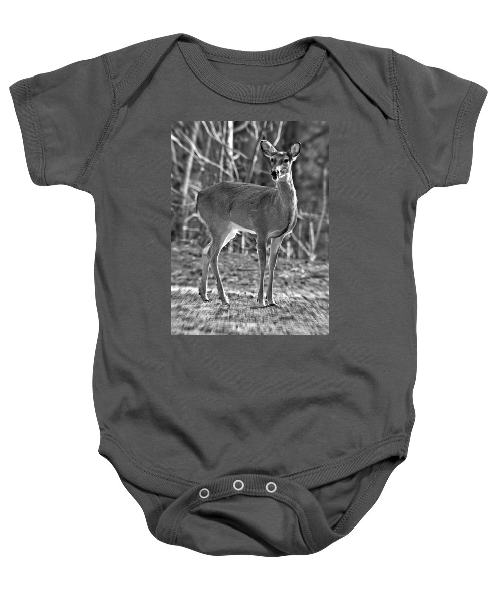 Deer Baby Onesie featuring the photograph Deer In The Forest by Susan Leggett