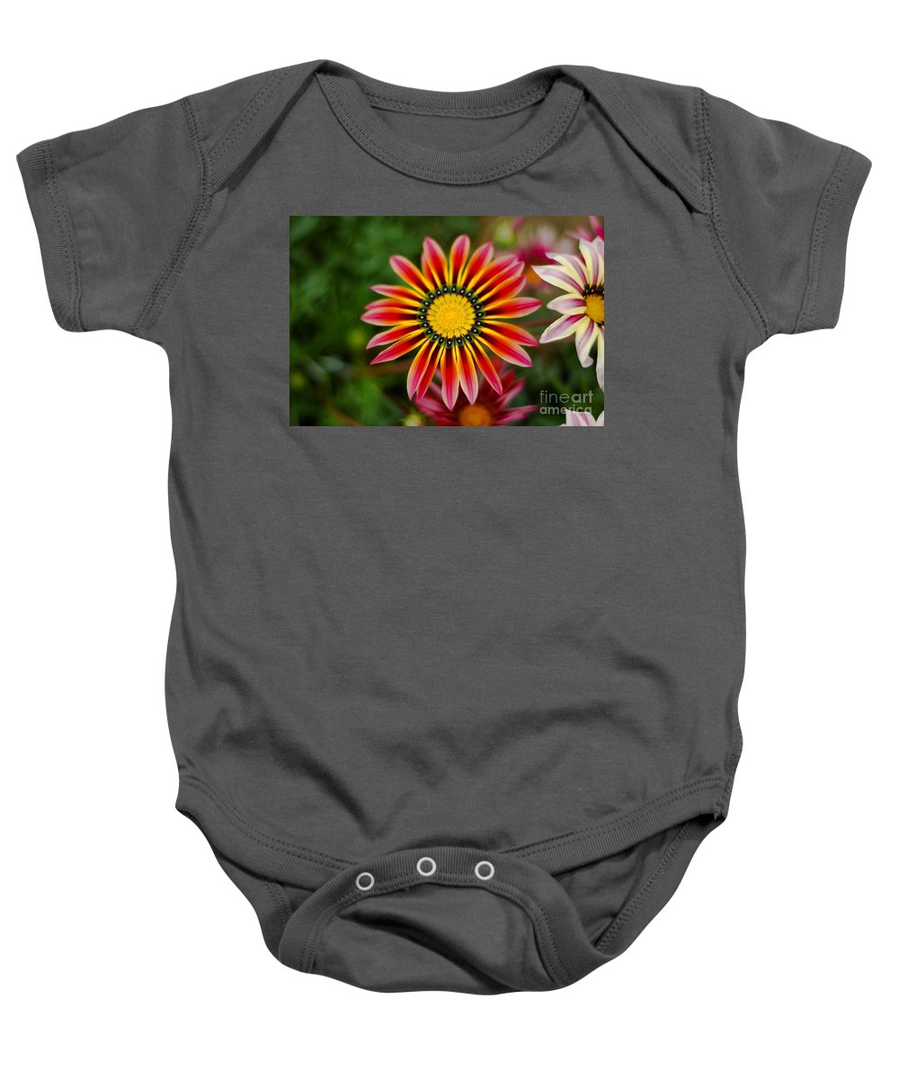 Flower Baby Onesie featuring the photograph Delicate Designs by Syed Aqueel